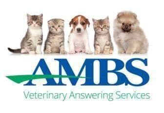 veterinary answering service